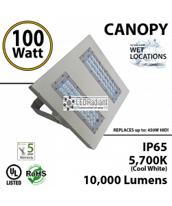 100W LED Canopy Light Ceiling Mount: 5500K 10000 Lm UL IP65