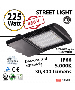 225 Watt LED 1000w Halogen Replacement 30300Lm Hid or hps lamps 480v