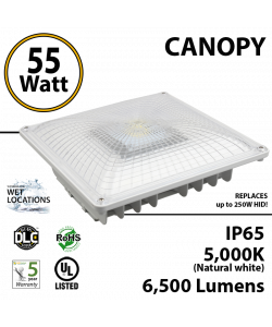 55W LED Canopy Light Ceiling Mount: 5000K 6500 Lumens UL IP65 DLC