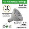 13W LED 60 Watt Halogen Equivalent PAR light 5000K 820 Lumens Frosted