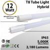 4Ft T8 Bulb Tube Light Frosted Lens 12W 2180Lm 5000K Hybrid Ballast or By-pass