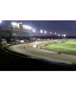 LED Stadium lights and arena light 600W 83900 Lm equal up to 2000W Metal Halide 5700K